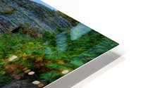 51 -2 Trail to Grinnell Glacier HD Metal print
