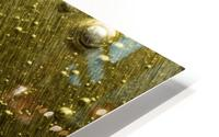 Gold Rush - Ruee vers l Or HD Metal print