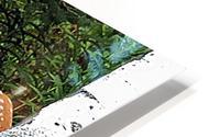 FawnBySaltBlock3 Impression metal HD