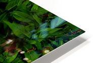 sofn-6D81AE31 HD Metal print