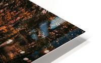 Forest 2_OSG HD Metal print