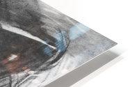 Baroness de Meyer by John Singer Sargent HD Metal print