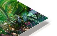 Jungle  HD Metal print