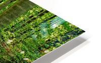 Trillium Woods VI HD Metal print