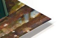 The Hedges Adirondack Window HD Metal print