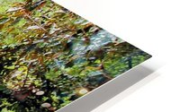 River7 HD Metal print