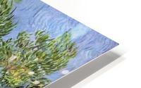 Olive Trees by Van Gogh HD Metal print