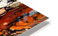 Biggs Jasper HD Metal print