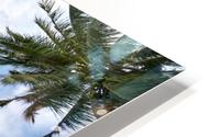 palm trees, sky, palms, background, summer, tropical, nature, holidays, travel, paradise, outdoors, HD Metal print