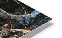 3011 - hold you HD Metal print
