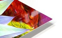 Succulent Dewdrop HD Metal print