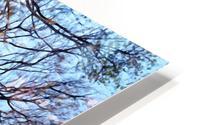 Abstract 4 HD Metal print