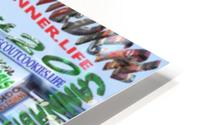 BRANDED & TRADEMARKED CANNABIS STRAINS 2 HD Metal print