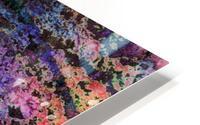 Paw Prints Soft Colours HD Metal print