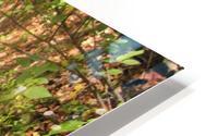 Landscape (105) HD Metal print