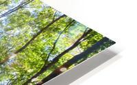 Landscape (249) HD Metal print