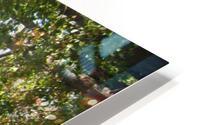 Landscape (302) HD Metal print