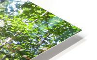Landscape (176) HD Metal print