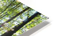 Landscape (37) HD Metal print