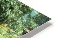 Bench (10) HD Metal print