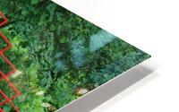 Dow Gardens Red Footbridge 062618 HD Metal print