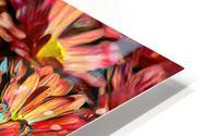 Rainbow Floral HD Metal print