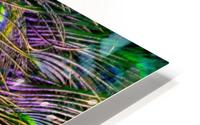 green purple and blue peacock feather digital wallpaper HD Metal print