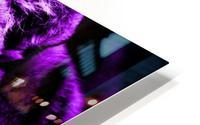 Tiger pop purple HD Metal print