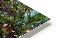 Zen Stones HD Metal print