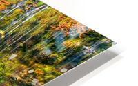 ColorFall HD Metal print