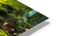Trail of the Cedars HD Metal print