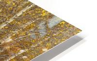 Oil Painting HD Metal print