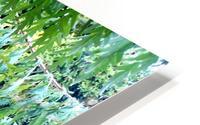 Rasta Leaves HD Metal print