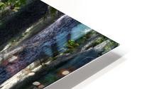 Swampy HD Metal print