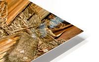 Jagged Gold HD Metal print