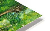 Arboretum shades HD Metal print