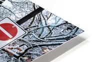 Snowy day HD Metal print