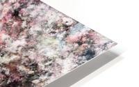 Coral HD Metal print