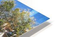 Canale San Giuseppe, Venezia HD Metal print