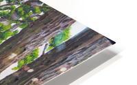 Fairies Forest HD Metal print
