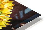 A Bunch Of Sunflowers HD Metal print