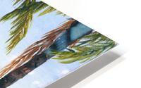 Canoe Beach HD Metal print