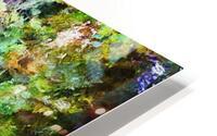 Fall Lake Reflections HD Metal print