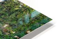 Icicle Gorge Trail HD Metal print