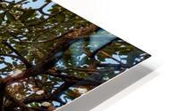 Resilience - width HD Metal print