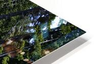 From Bridge to Stream HD Metal print
