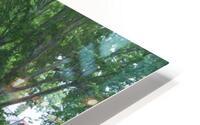 Summer Rain ap 2892 HD Metal print