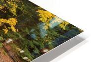 Fall Color ap 2453 HD Metal print