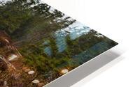 Driftwood ap 2257 HD Metal print