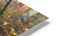 Alisa - Crystal apmi 1975 HD Metal print